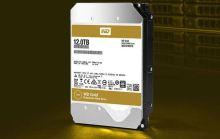 WD Gold Enterprise 12TB